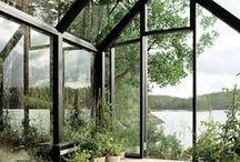 Modern   Home Ideas / by WallsNeedLove