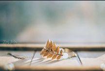 Lady Selva Shop / Encontraras piezas sencillas, románticas y delicadas, diseñadas y hechas a mano. Ceramics. Custom wedding cake toppers. Con filosofía Slow life, me inspiran las cosas bonitas y la naturaleza. - Shop: https://ladyselva.bigcartel.com/ - Etsy Shop: https://www.etsy.com/shop/ladyselvashop - E-mail: ladyselvashop@gmail.com