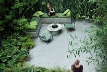backyard / Goes along with LETS SIT