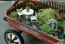 garden goodies / Planning my dream garden!