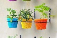 Gardening / by Charmi Modi