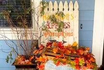 fall / by Rachel @ Like a Saturday