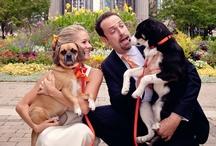Pet-lovers wedding