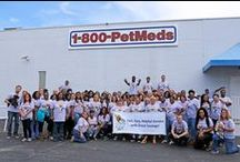 PetMeds Pride! / Check out some of the behind the scenes action at PetMeds!   / by PetMeds