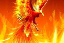 Phoenixes / The name is pretty self-explanatory, isn't it?