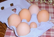 Chickens / We keep chickens for the fun of it and for fresh, wholesome eggs.