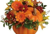 Thanksgiving | November 22 / Thanksgiving party ideas. Fall decorations. Crafts. Recipes. Tableware. Accessories. https://www.windycitynovelties.com/holidays-occasions/holiday-party-supplies/thanksgiving.html