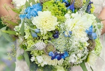 CMcM wedding / blue and purple and white and green hydrangeas and roses