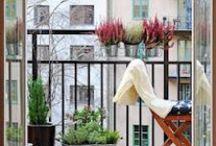 Patio Ideas / by Silvana Sagan Jewelry & Designs