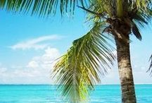 Tropical Beaches...Water fun / Beautiful beaches from around the world. And more that make you enjoy your time in the sun even more. / by Deborah Brown - Author