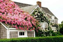 Home Sweet Home :: Homes & Gardens