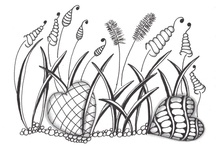 Art - All tangled up - Zentangles and doodles / Zentangles and doodle pictures / by Julie Richards
