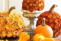 The Colourful Season of Autumn / From gourds, ghosts and goblins all the way to wonderful harvest-themed centre-pieces.  Let's embrace one of the most colourful seasons of the year.