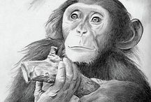 ART - Graphite Pencil Sketch / Drawing and sketches drawn using the medium graphite pencils / by Julie Richards
