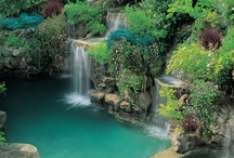OUTDOOR / Garden, rooftop, pools