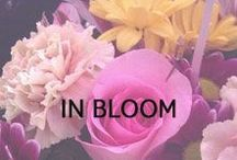 In Bloom / We can't get enough of gorgeous arrangements and whimsical flower crowns.