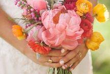 wedding things. / by Amy Prazniak