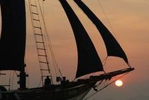 sail away ........ / by Agnes Strauss