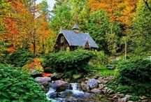 cute sheds and cabins / by Janice Johns