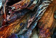 colors of autumn / by Agnes Strauss