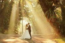 Beloved Snapshots  / Wedding and engagement photo inspiration
