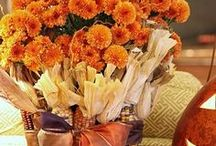 Fall Decorating Ideas / The changing of the seasons...a time to be thankful. / by Julie Hayes-DeLong