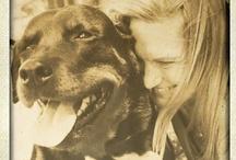 must love DOGS xxx / by Fiona Cochrane