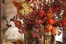 ThanksGiving Celebration/Fall / by Clarita Langsner Solomon