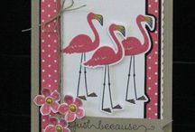 SU Flamingo Lingo