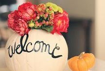 Fall decor / by Christine Feight
