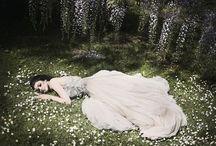 Fairy tales / by Star Twinkle