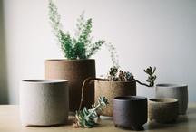 flora / plantholders