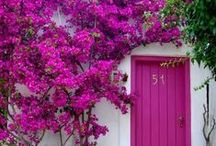 Doors / Welcome ... / by FRESH GYPSY