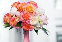 Bridal Bouquets / Suhaag Garden's bridal bouquets and personals for brides and her bridesmaids are available in a variety of flowers, colors, sizes and price range.