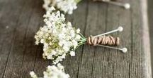 Budget Wedding / Fantastic ideas to help make your big day amazing without the big cost!