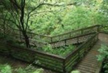 Beautiful Nature / by SustainableUF