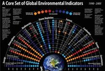 Infographics / by SustainableUF