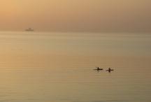 Saltwater retreat