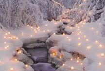 Winter dreams / by Marci Johnson