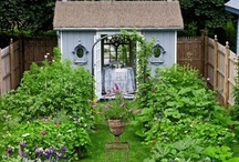 Farm and Garden / by Alexandra Bushee