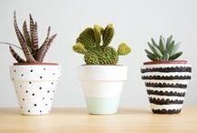 DIY crafts / by Aynsley Eggen