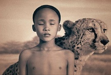 ✦ Gregory Colbert photography ✦ / Gregory Colbert has used both still and movie cameras to explore extraordinary interactions between humans and animals. His exhibition, Ashes and Snow, consists of over 50 large-scale photographic artworks, a 60-minute film, and two 9-minute film haikus.
