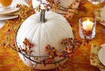 Harvest Celebration / Fall Holiday Ideas / by Sonia Silva