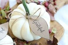 Fall & Thanksgiving /  fall and Thanksgiving celebration ideas for families