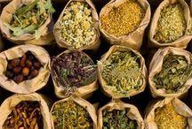 Herbs & such / by Michelle Parkinson