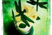 Dragonflies ❤ / Dragonflies, libellule