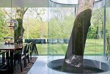 Tree in the House | Дерево в доме