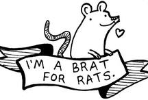 ratties / by Laura Mohn