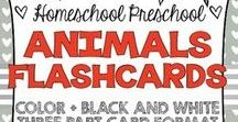 PRESCHOOL-Animals / Toddler and Preschool Activities and printables for teaching animals.