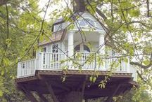 Tree Houses, Architecture and Places / by Jacqueline clark
